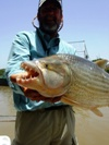 Tigerfish-Hydrocynus Brevis - IGFA All Tackle World Record